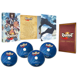 COFFRET DVD RADIANT S1 COFFRET DVD INTEGRALE 4 DVD