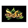 DOFUS Tome 11 : Ombrage et lumière